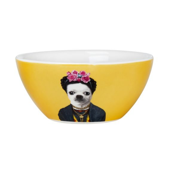 Bowl Pets Rock Mexico 550 ml